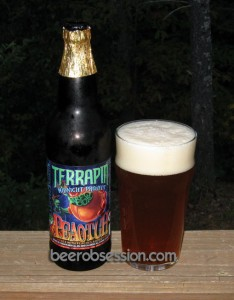 Terrapin/Left Hand Midnight Project - Peaotch